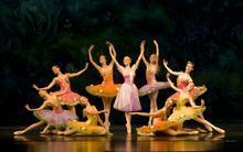 少儿芭蕾舞蹈视频专辑