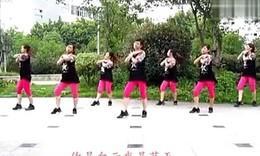 张林冰广场舞大全_张林冰广场舞教学专辑