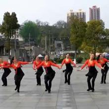 紫玫瑰广场舞大全_紫玫瑰广场舞教学专辑